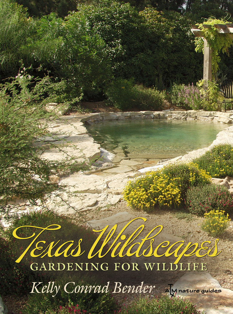 Texas Wildscapes, Kelly Bender