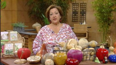 Gourds with Trisha Shirey