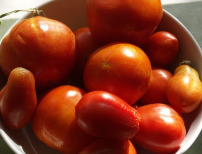 Get Growing with Tomatoes | Central Texas Gardener