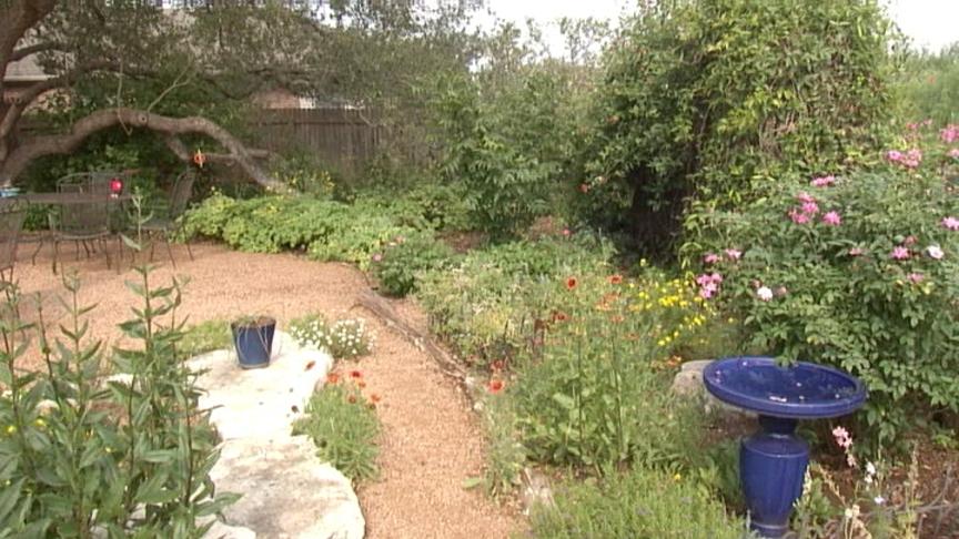 Native Plant Garden Design Central Texas Gardener