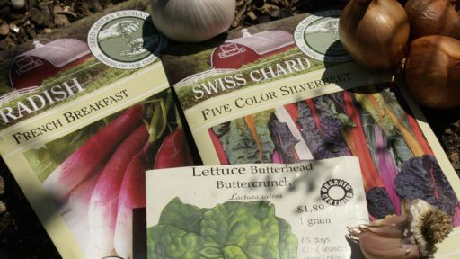 Seed packets, garlic and shallots Central Texas Gardener