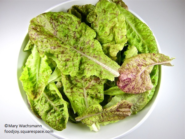 Speckles lettuce from Food Joy garden