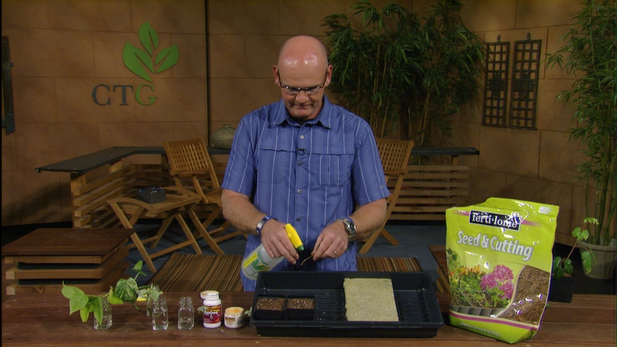 plant propagation with Merrideth Jiles, The Great Outdoors