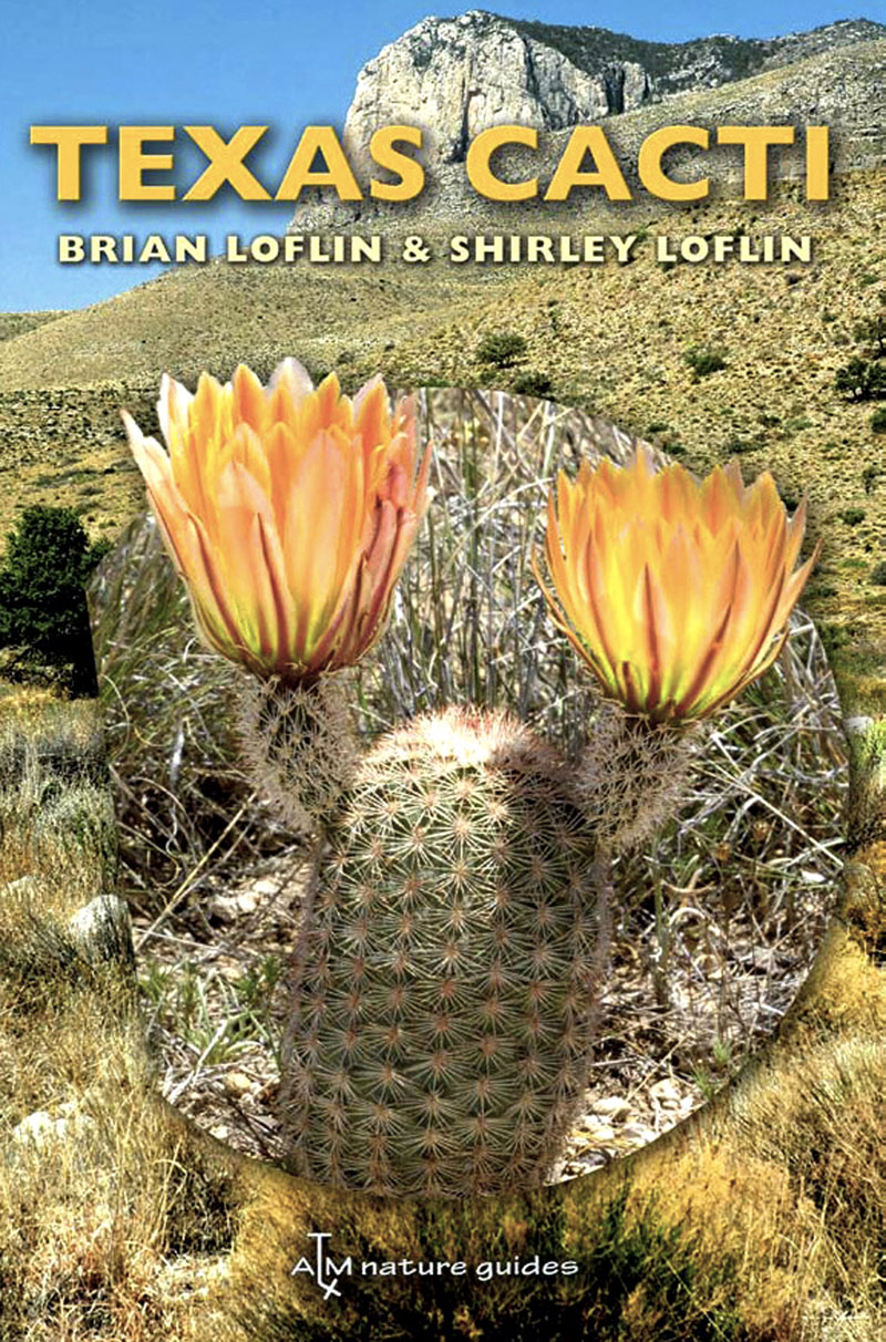 Texas Cacti Brian and Shirley Loflin