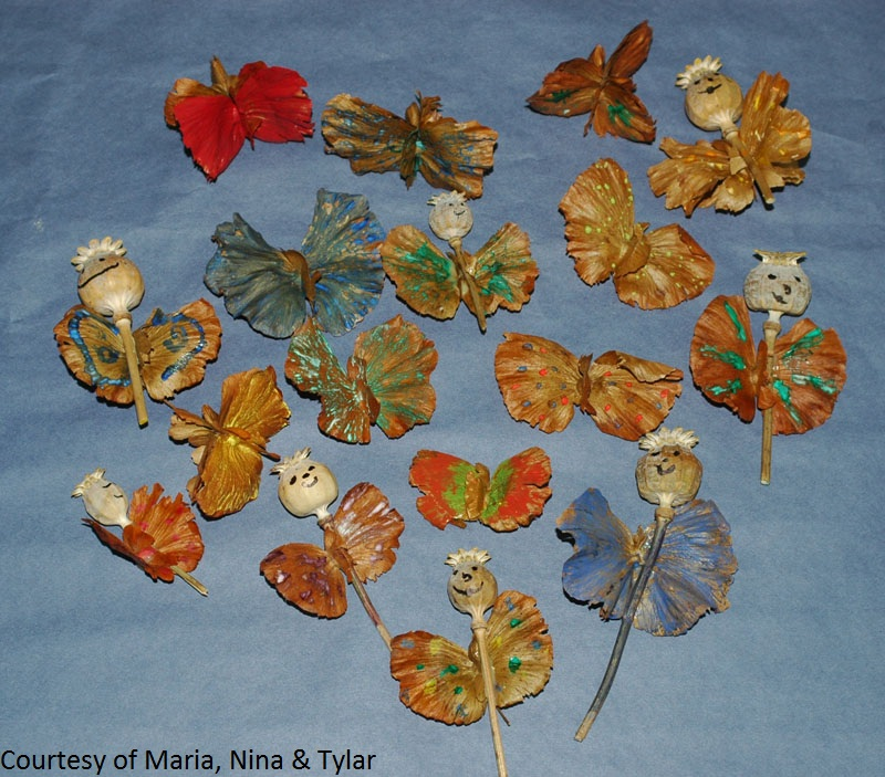 butterfly vine crafts for kids