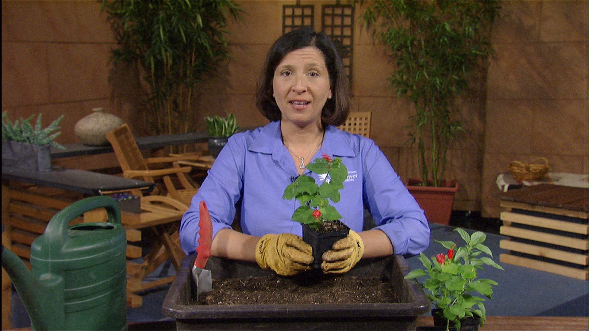 Andrea DeLong-Amaya shows how to plant