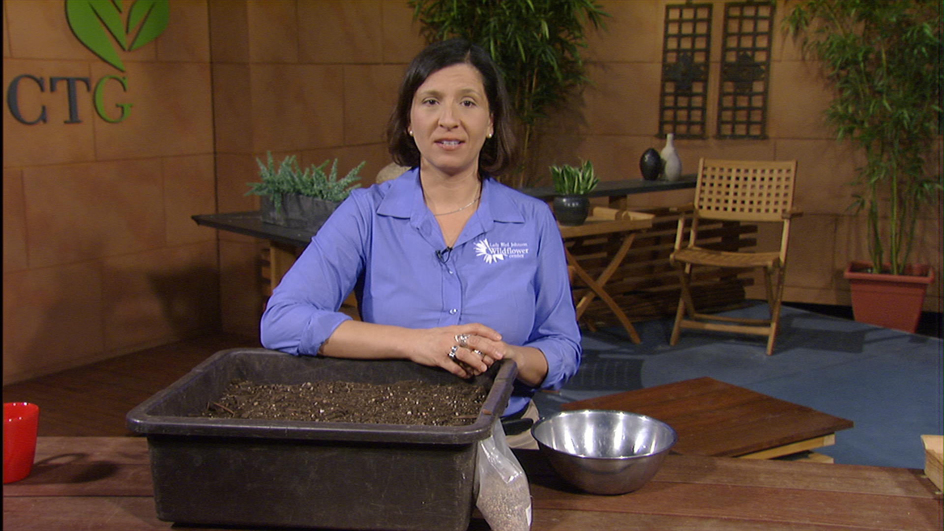 plant bluebonnet seeds