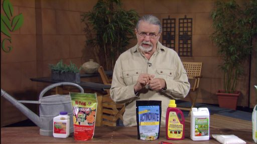 Fruit tree insect and fungal prevention John Dromgoole