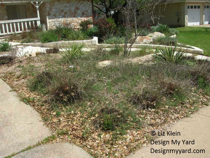 Liz Klein Design My Yard ridding Bermuda grass