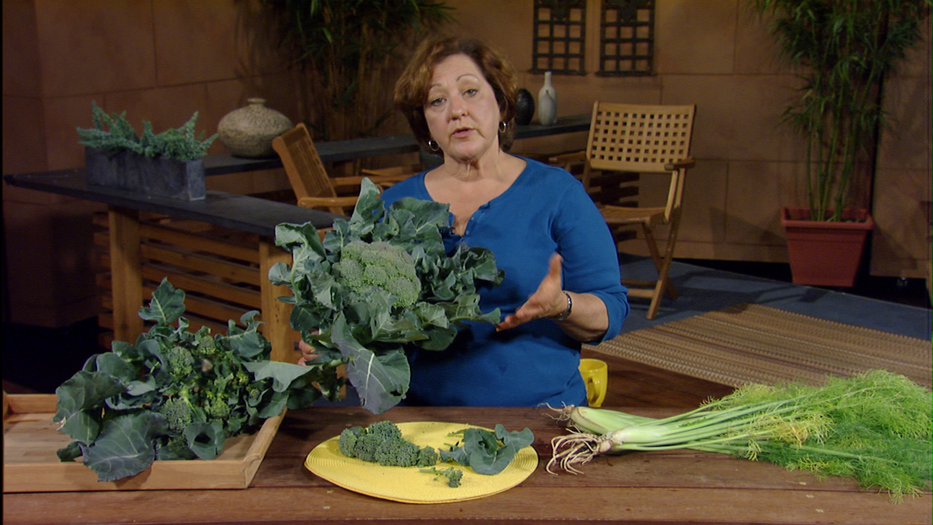 how to cut broccoli plants Trisha Shirey