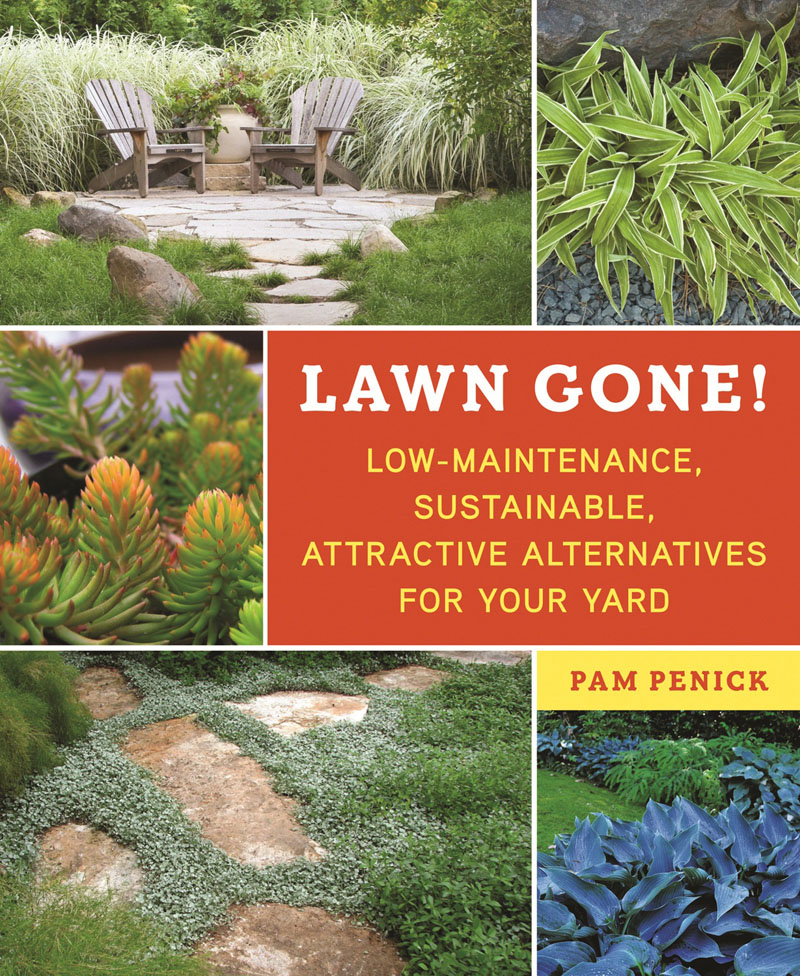 lawn gone pam penick central texas gardener