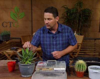 Toolkit for cactus and agaves Jeff Pavlat Austin Cactus & Succulent Society
