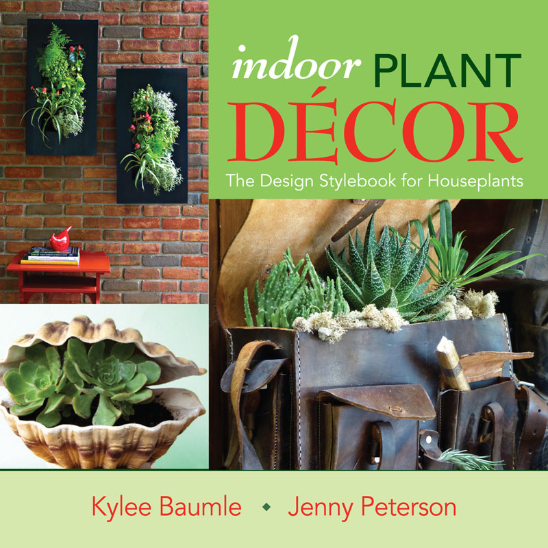 Indoor Plant Decor Jenny Peterson and Kylee Baumlee St. Lynn's Press