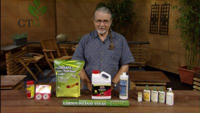 Backyard Basics John on Mosquito Control