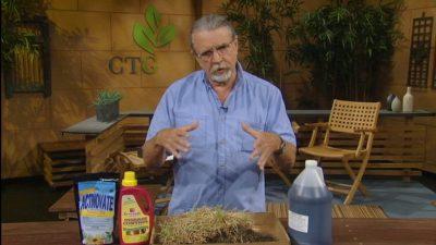 john dromgoole talks grass problems