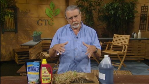 john dromgoole talks grass problems