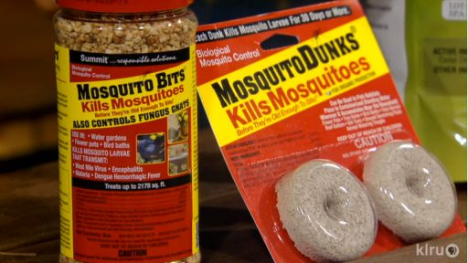 kill mosquitos