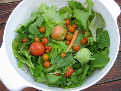 lettuce, sheryl williams