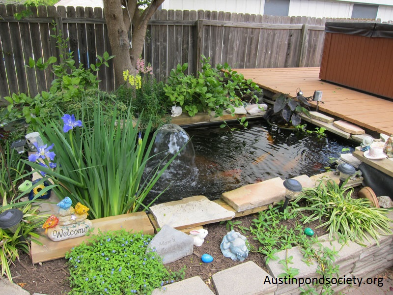 Austin Pond Society tour