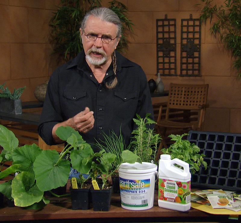 John Dromgoole plants summer to fall vegetables seed trays