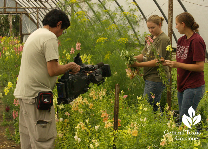 KLRU taping at Cuts of Color flower farm
