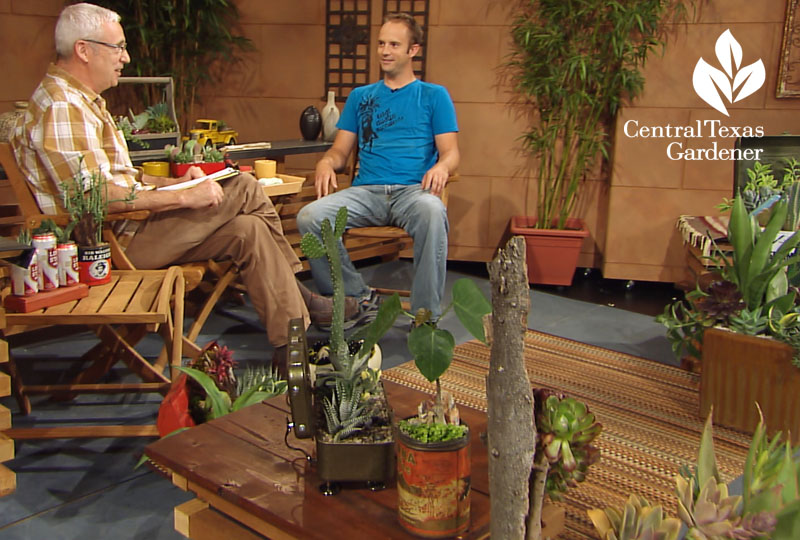 succulent containers Eric Pedley East Austin Succulents and Tom Spencer Central Texas Gardener