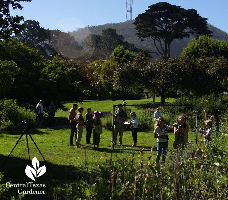 San Franciso Botanical Garden with Saxon Holt