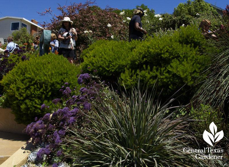 Wave Garden San Francisco Garden Bloggers