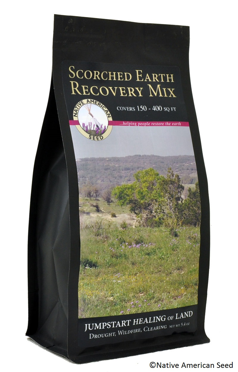 Scorched Earth Recovery Native American Seed