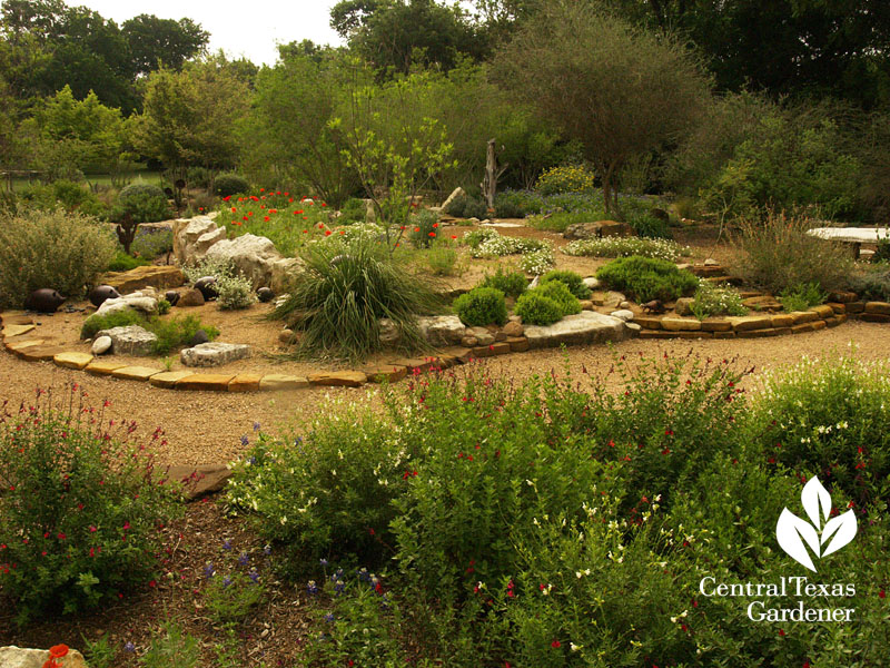 Garden berm with native plants