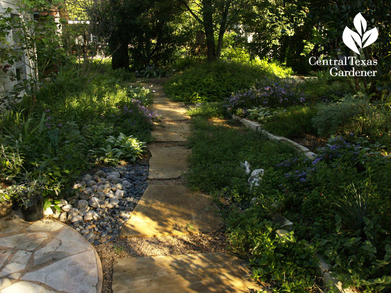 Early morning no lawn path Linda Lehmusvirta Austin garden