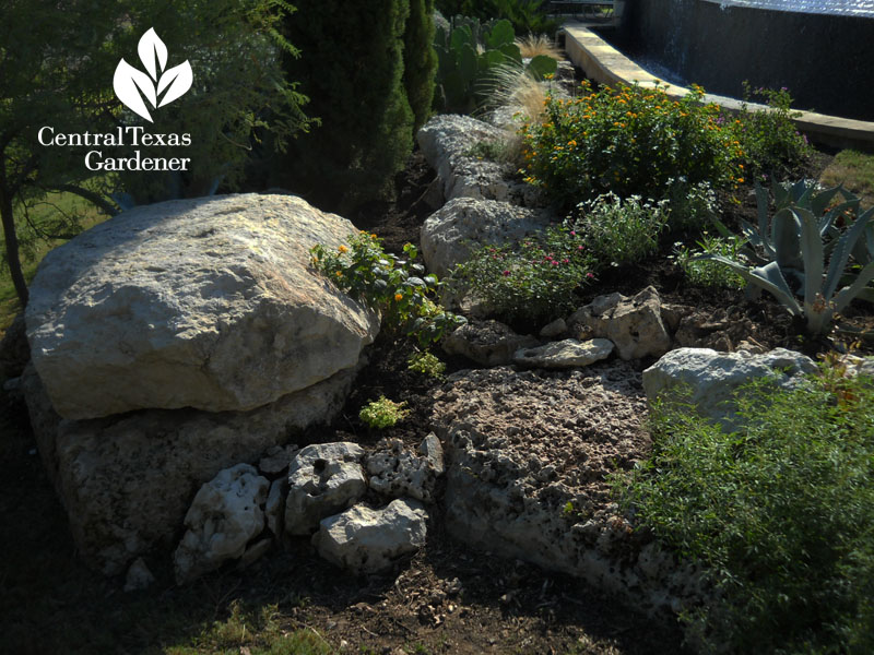 Drought design for Minnesota gardener in Texas