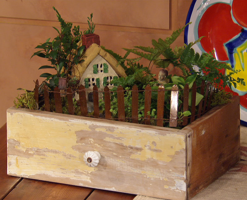 fairy garden in old drawer Bonnie's Greenhouse