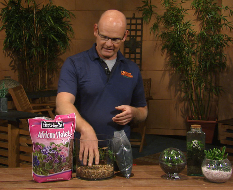 Terrariums with Merrideth Jiles Central Central Gardener
