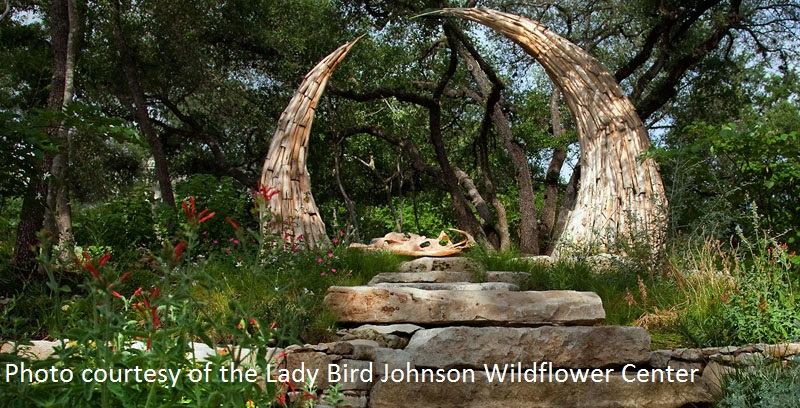 Chris Levack sculpture Lady Bird Johnson Wildflower Center Gardens on Tour