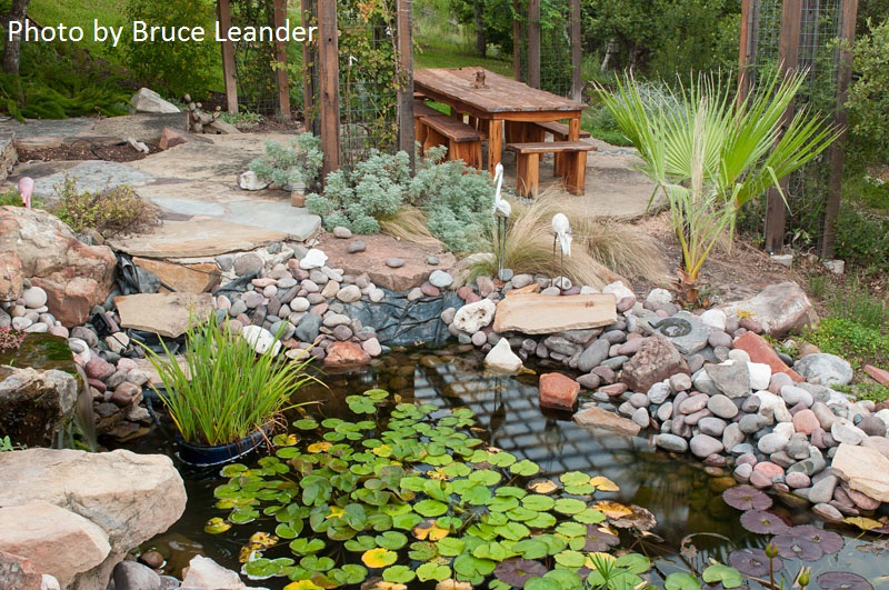 Pond and patio Austin Texas photo by Bruce Leander