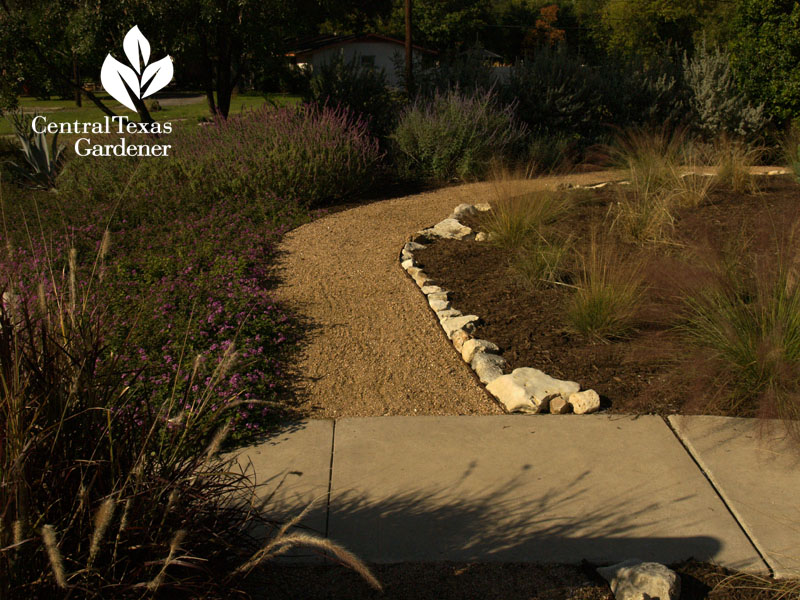 xeric style wildlife plants and path san antonio texas