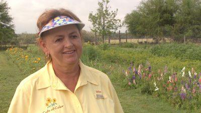 Garden Rita Anders