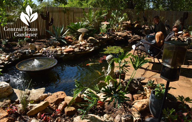 backyard pond design central texas gardener