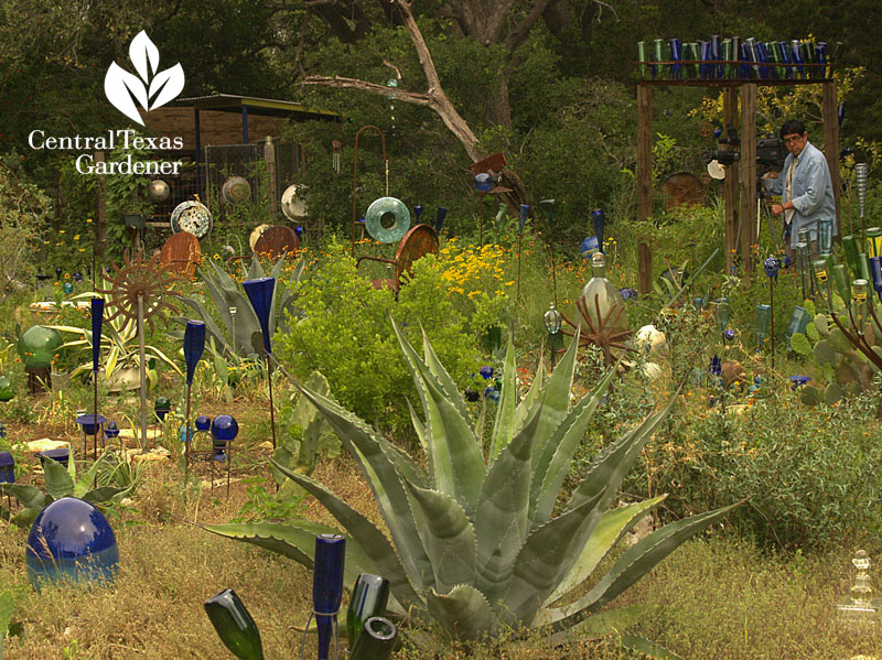 Healing garden with cancer struggle central texas gardener