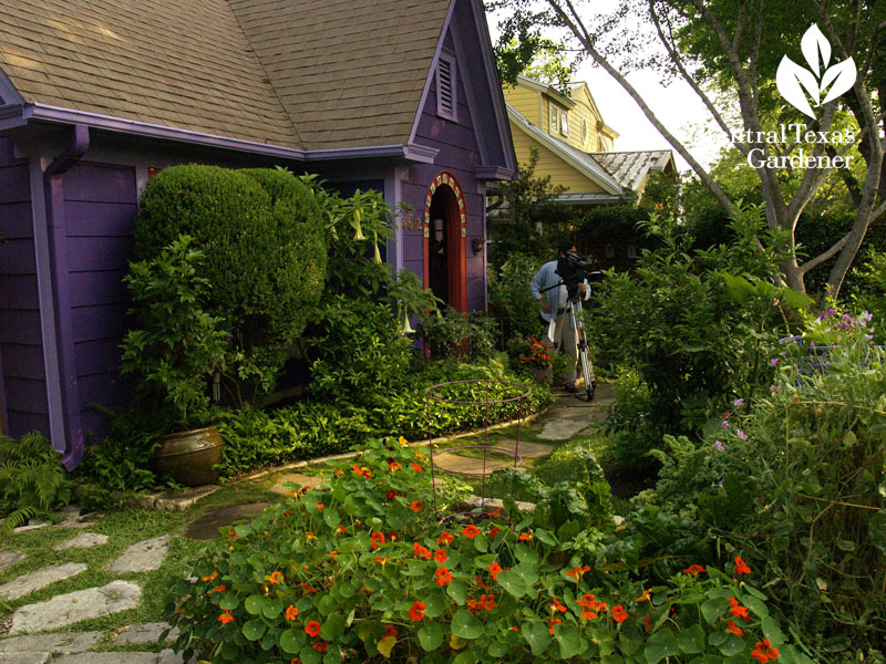 Lucinda Hutson's purple cottage Central Texas Gardener Ed Fuentes