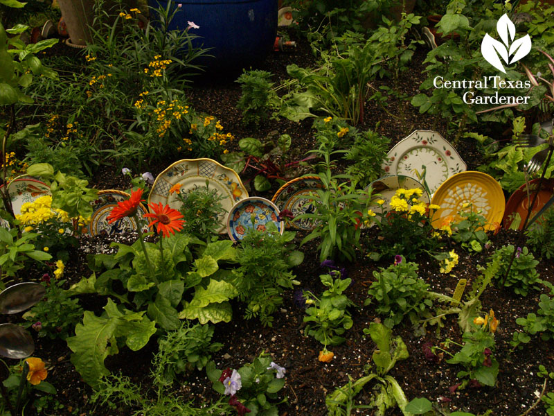 lucinda hutson's decorative plate herb bed