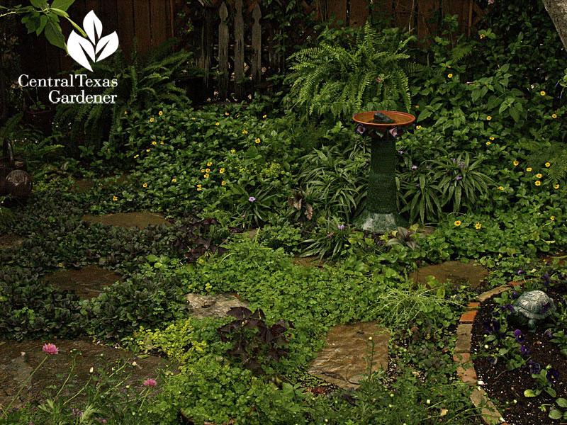 Lucinda Hutson shade garden cove