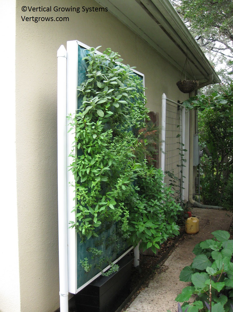Vertical Growing Systems Central Texas Gardener