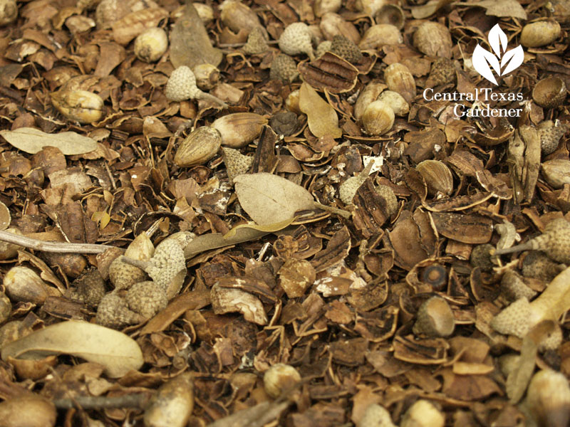 pecan mulch ten eyck
