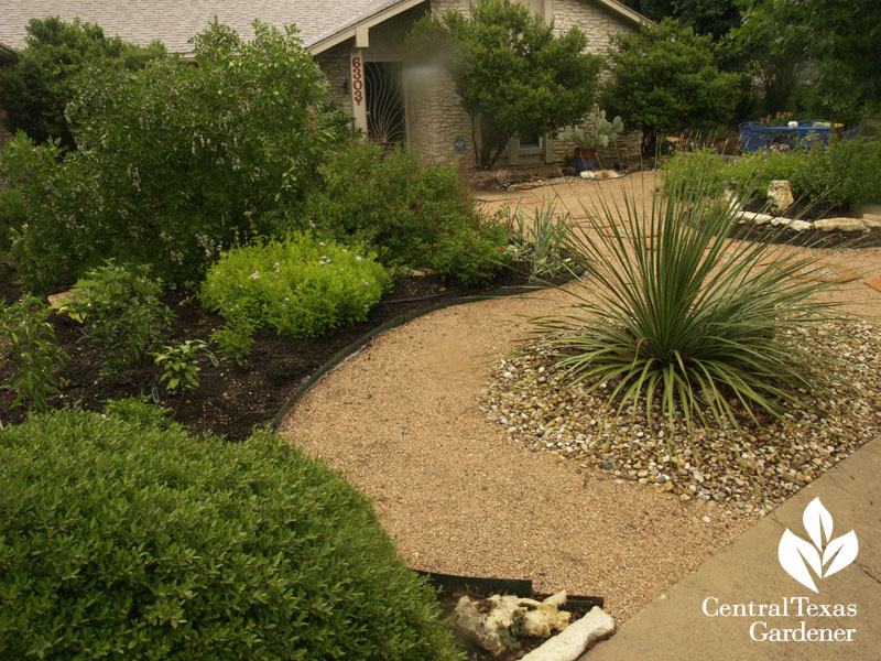 no lawn front yard central texas gardener