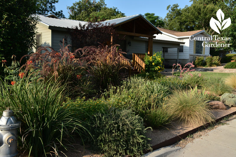 reduced lawn front garden native plants