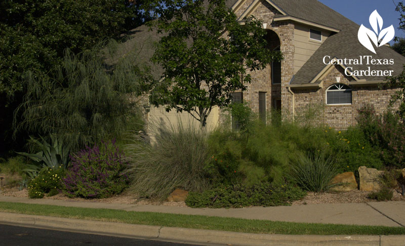 reduced lawn for wildlife plants Central Texas Gardener