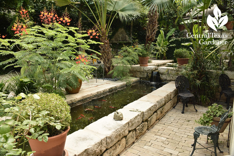 rill in San Antonio courtyard Central Texas Gardener
