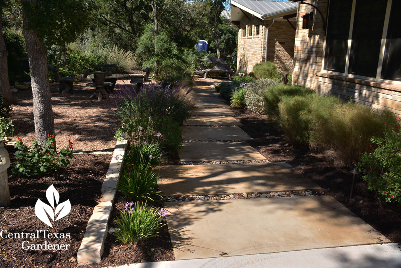 beautiful front walkway that controls rainwater Central Texas Gardener